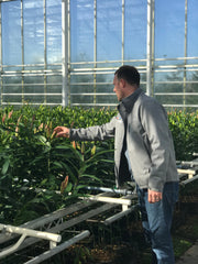 2nd generation Lily grower