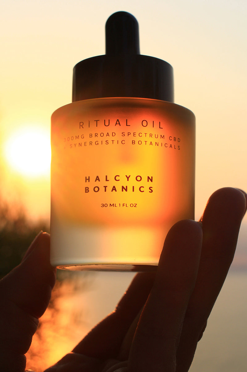 A 1oz Dropper Bottle of Halcyon Botanics Ritual Oil bottle containing 300mg of Broad Spectrum CBD Oil per serving. This oil is recommended to be used topically anywhere on the body for overall skin wellness and beautification. CBD Clean Beauty at its purest standards. Vegan, Organic, and THC-free.