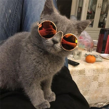 Load image into Gallery viewer, Stylish Cat Sunglasses-LavIemate