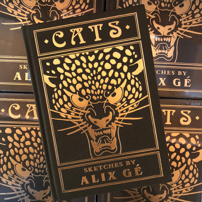 belzel books, cats-sketches by alex ge, cover, leopard, traditional,