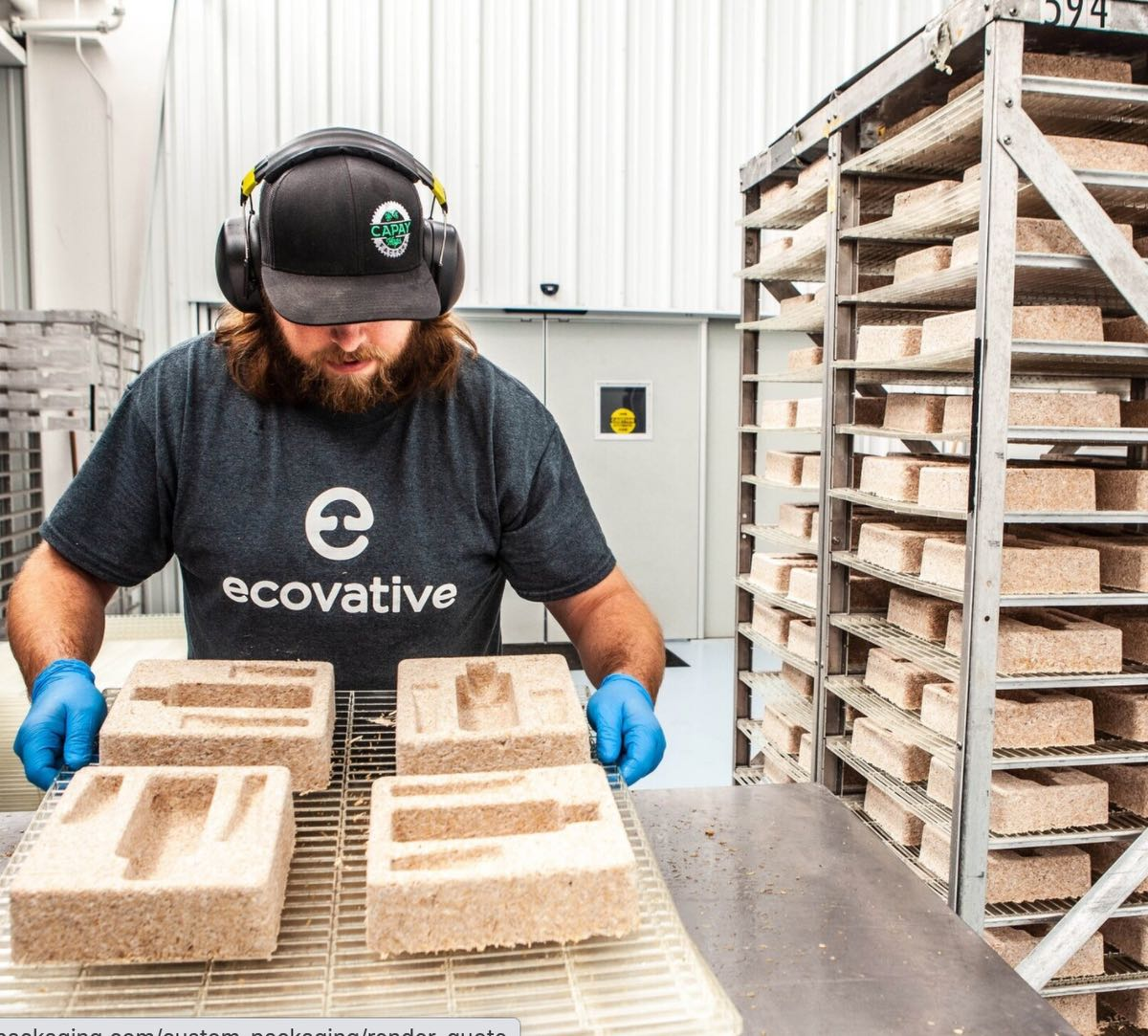 (Mycelium package design by Ecovative)