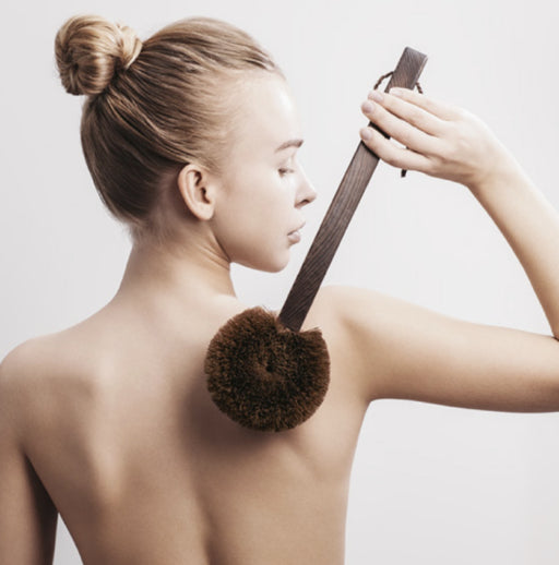 Body Brush with Long Cypress Handle | Ecoist