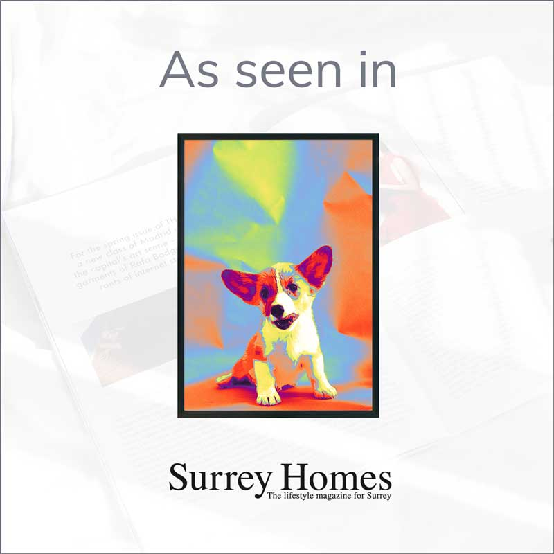 Claude & Leighton Jack Russell dog portrait art print appeared in Surrey Homes Magazine