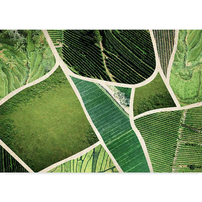 Fields of Green Nature Photography Art Print at Claude & Leighton