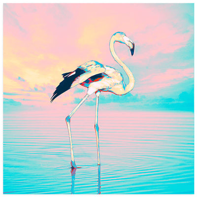 Flamingo Sky Illustration Art Print at Claude & Leighton
