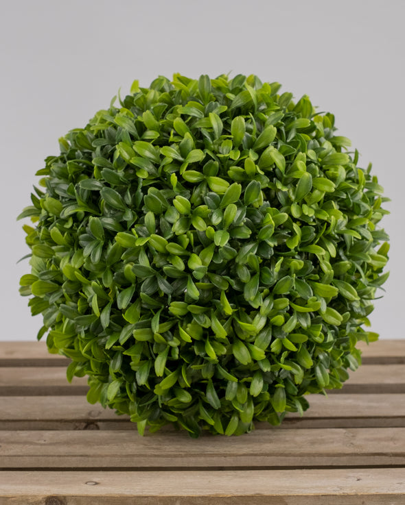 BOXWOOD BALL 22CM UV PROTECTED