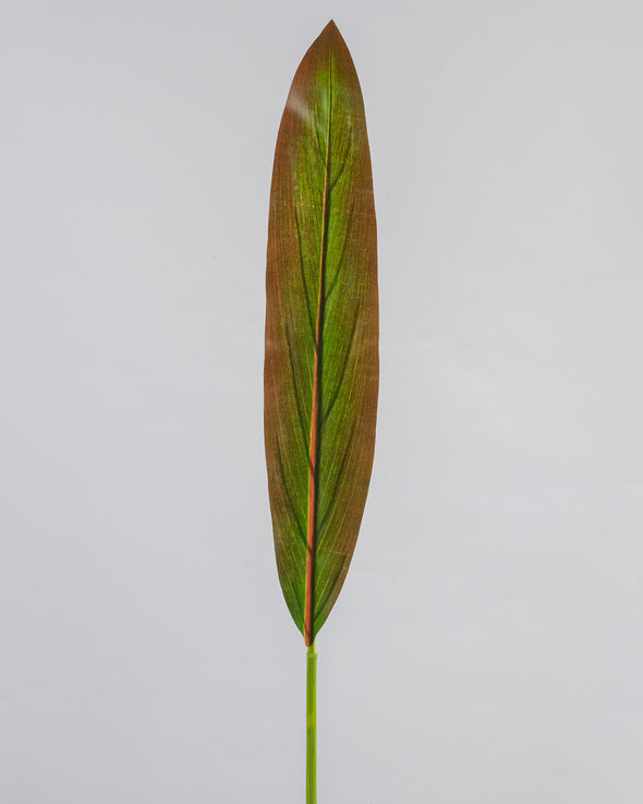CORDYLINE LEAF RED/GREEN 87CM