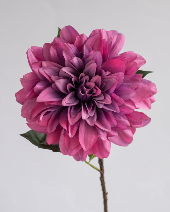 DAHLIA SPRAY MAUVE