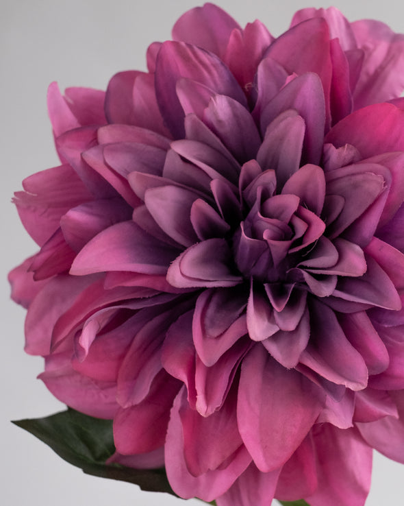 DAHLIA SPRAY MAUVE - 6250MV  (Box of 8)