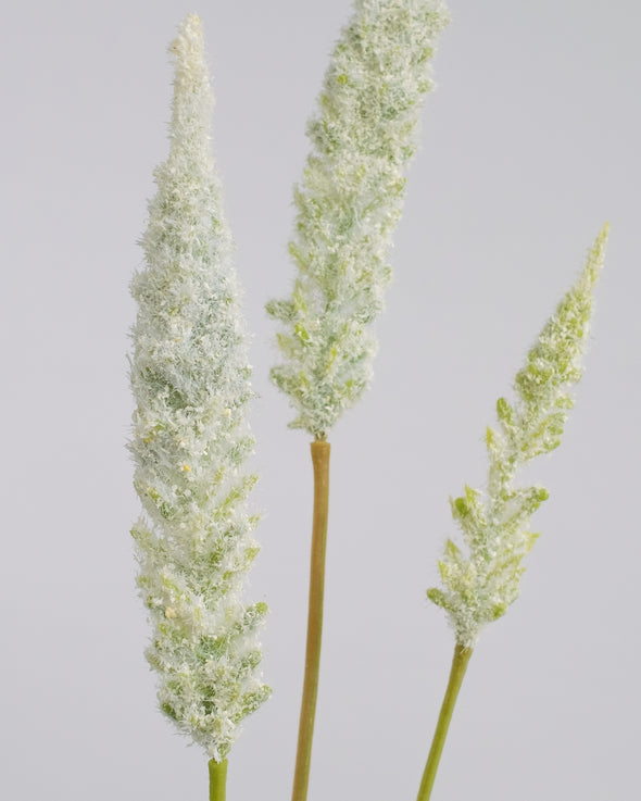 ASTILBE SPRAY CREAM 81CM - 6269CR