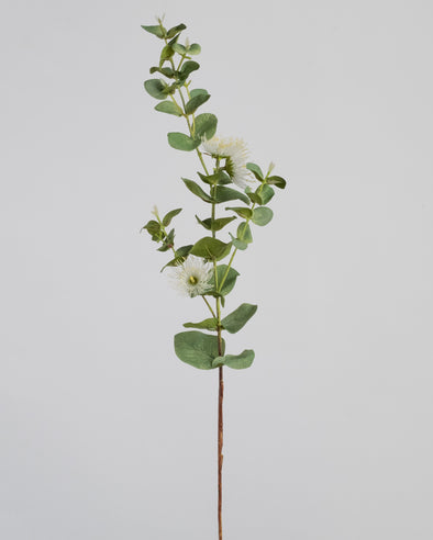 EUCALYPTUS FLOWER SPRAY WHITE 75CM - 6366WH