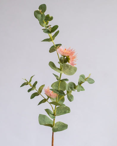 EUCALYPTUS FLOWER SPRAY PINK 75CM - 6366PK