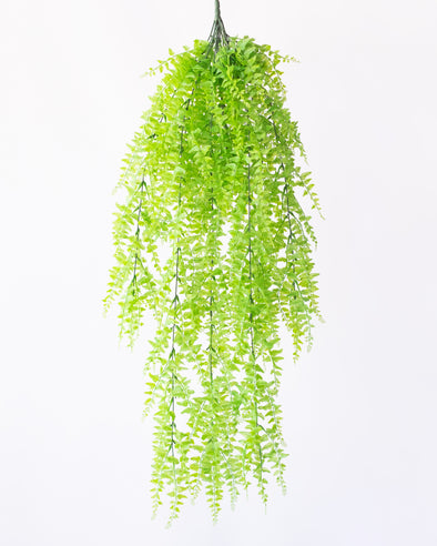 UV MELON SEED FERN HANGING BUSH 95CM - 6410