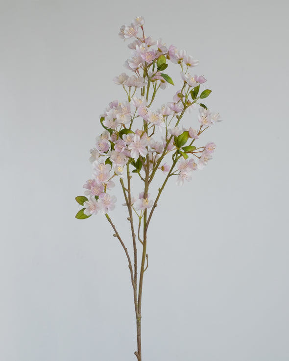 MINI PEACH BLOSSOM PINK