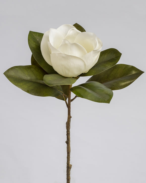 SINGLE MAGNOLIA WHITE 67CM
