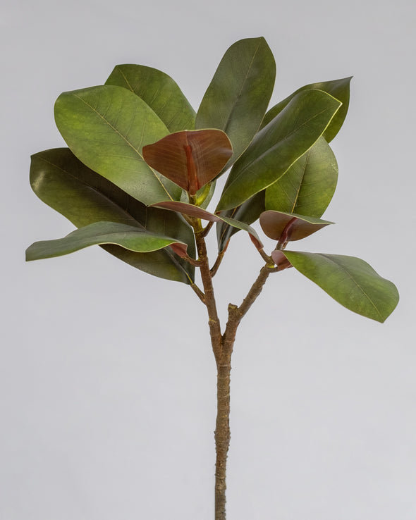 MAGNOLIA LEAF SPRAY 12LVS GRN 65CM