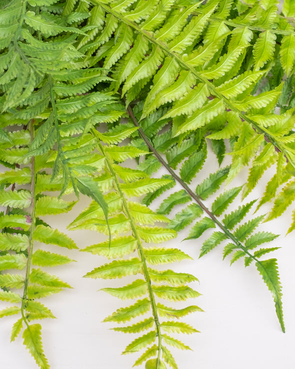 MARSH FERN BUSH OUTDOOR UV 55CM - 6563