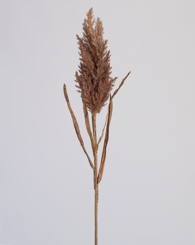 DRIED REED SPRAY MED BROWN 93CM - 6746BR