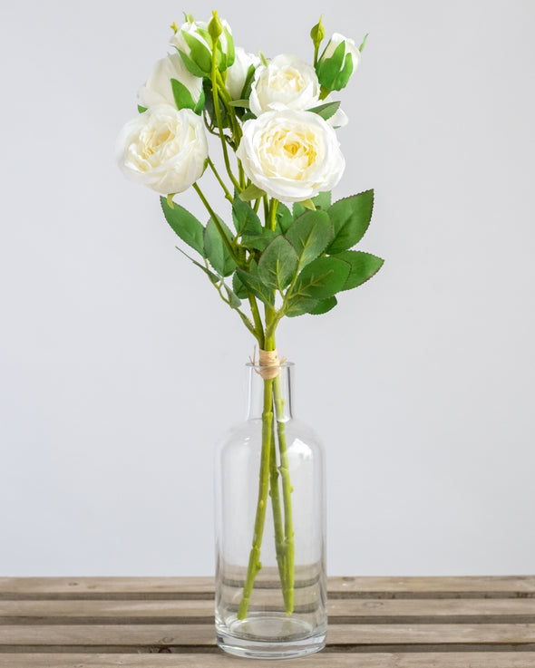 ROSE BUNDLE X3 WHITE - 6750WH