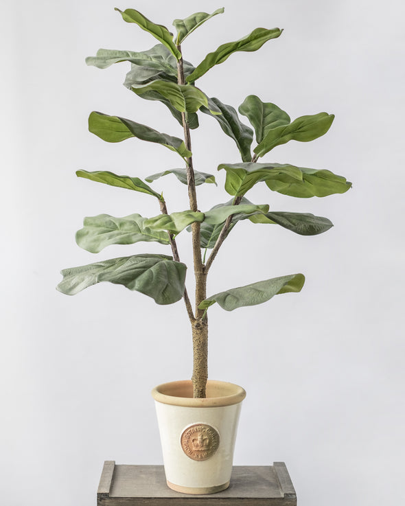 POTTED FIDDLE TREE 3' (91CM) - 6760