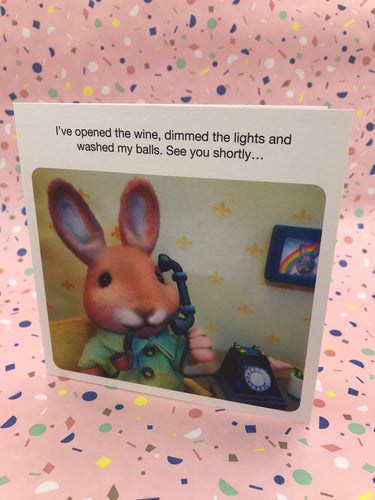 A photograph of a rabbit detailing the preparations they have made for a date