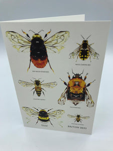 British Bees Louise Jennifer Designs