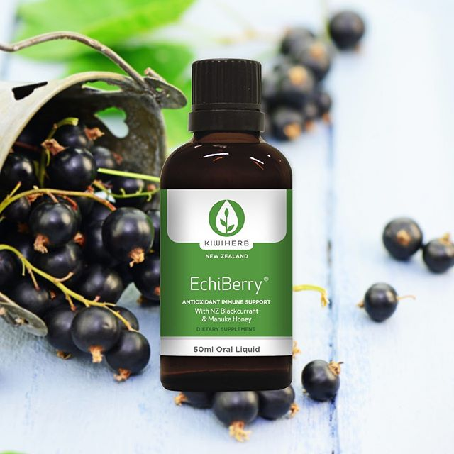 KiwiHerb Echiberry 50ml + Elderberry *Essential*