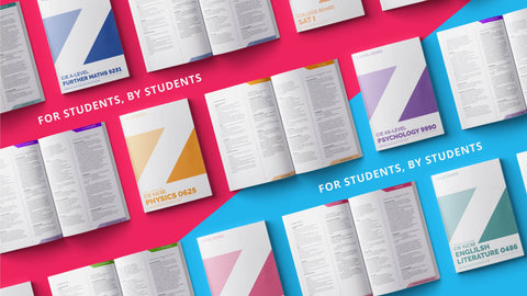 a variety of books containing ZNotes' study guides including physics and maths over a blue and red background.