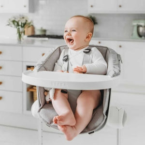 Up & Down Highchair & Cushion