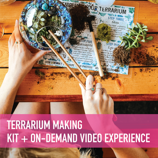 Terrarium Making Kit + On-Demand Video
