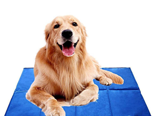 Self-Cooling Dog Mat