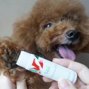 Flowery Flavor Paw Care Cream