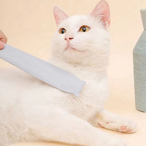 Portable Multi-purpose Tongue Clean Comb For Cat