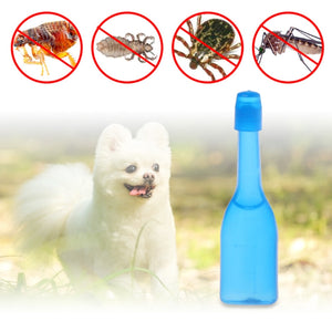 Pet Insecticide Flea Lice Insect Killer Spray For Dog