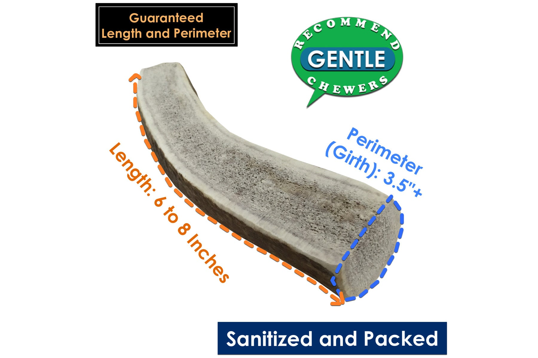 Giant Split Elk Antler Chew