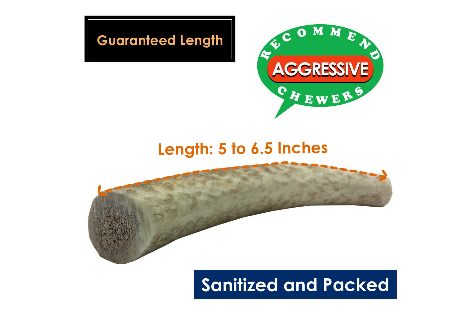 Twin Pack Medium Whole Elk Antler Chew