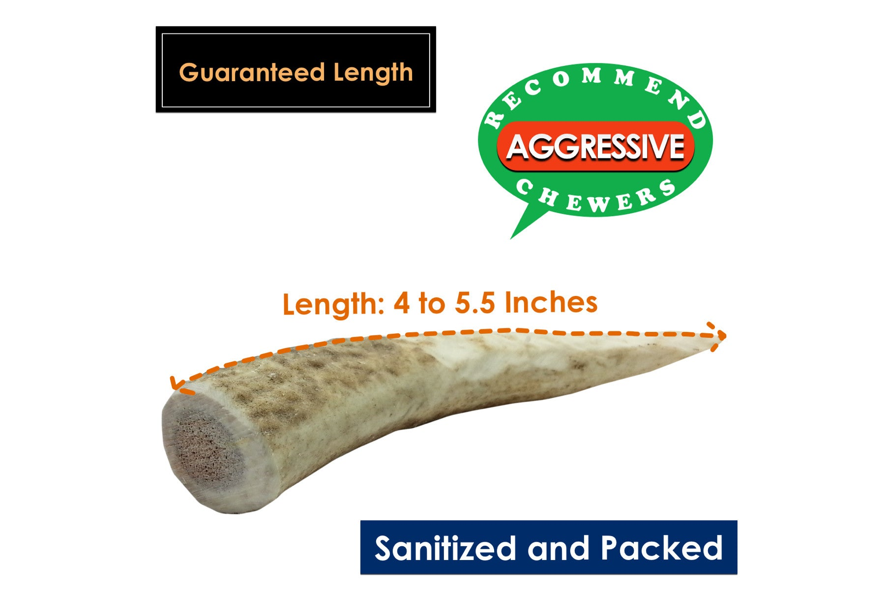 4-Pack Small Whole Elk Antler Chew