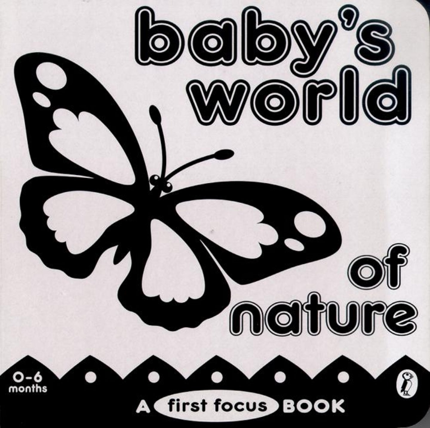 Baby's World of Nature: a First Focus Board Book