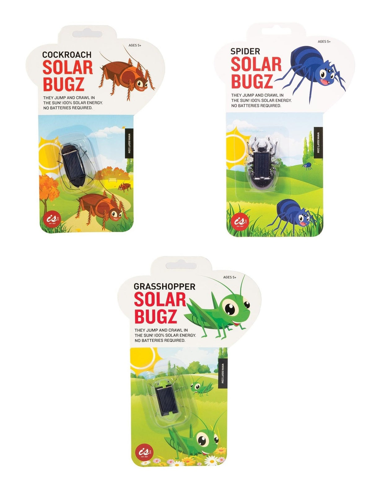 IS Gifts: Solar Bugz - Desk Toy (Assorted Designs)