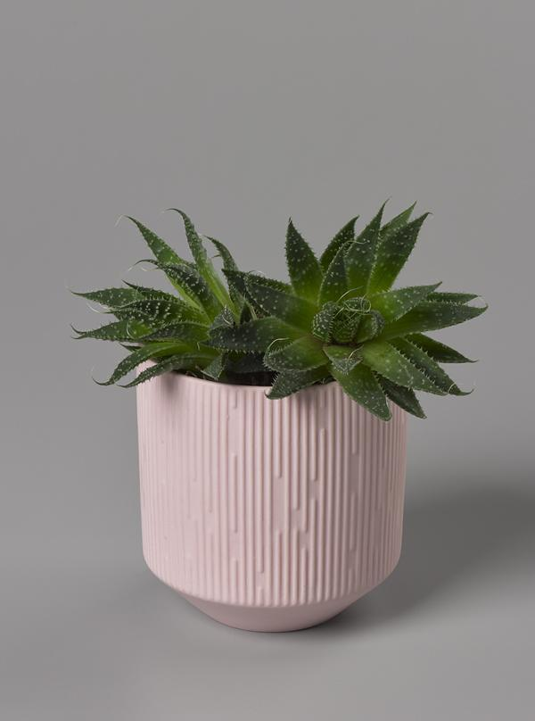 Aery: Clay Ceramic Plant Pot Candle - Neroli & White Lavender
