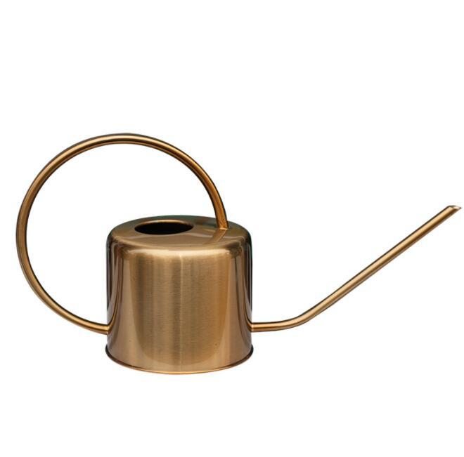 Brass Stainless Steel Watering Can - Indoor Plants