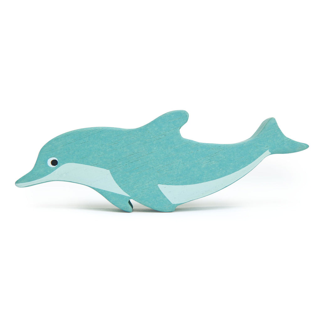 Coastal Animals - Dolphin