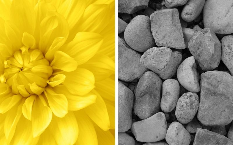 Illuminating yellow and Ultimate Grey