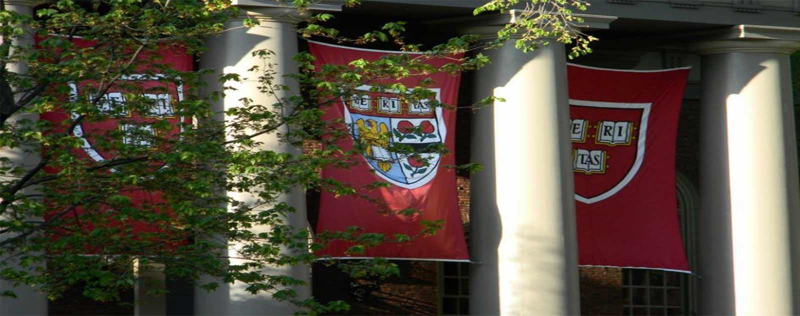 conditions admissions harvard
