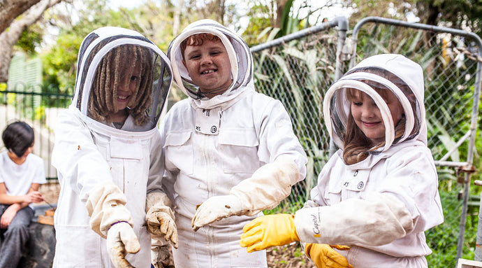 hives minds: teaching the next generation of bee conservationists