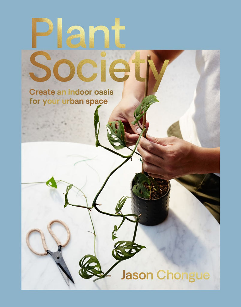 Plant Society / Jason Chongue