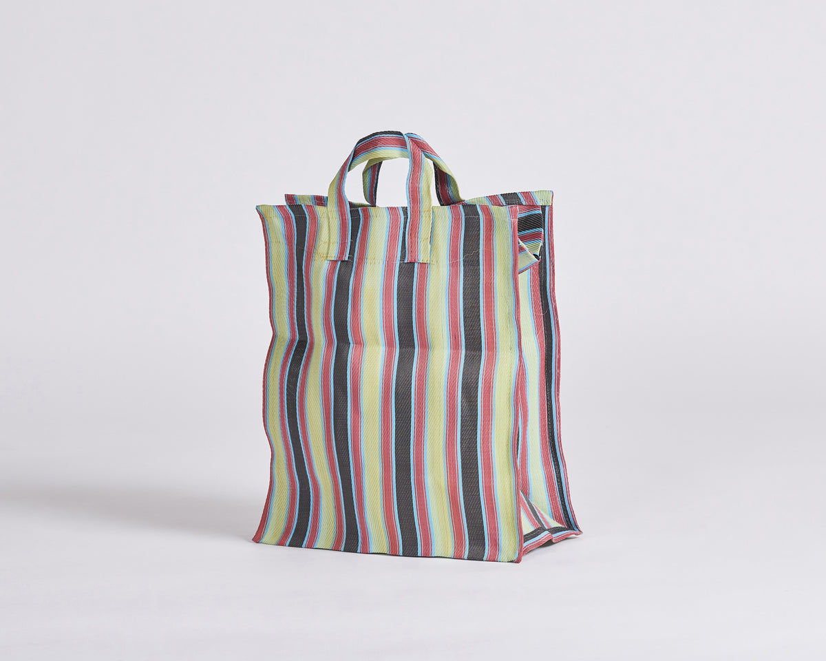 Day-to-Day Bag - Small (Tall) 003