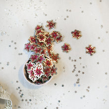 Load image into Gallery viewer, Fuchsia/Silver Sequin Stars