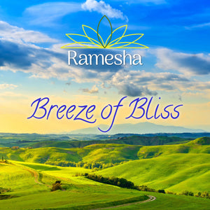 'BREEZE OF BLISS' - CD + Ladies T-Shirt Bundle