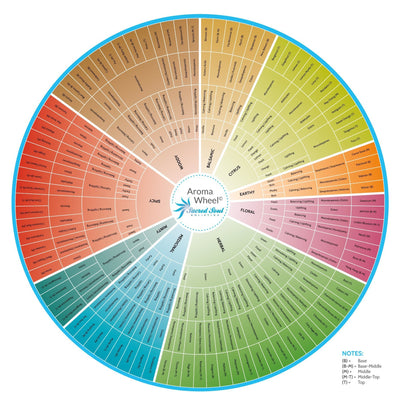 Become An Essential Oil Connoisseur With The Sacred Soul Aroma Wheel